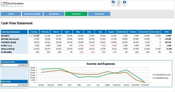 Cash Flow + Accounts Payable Receivable - Professional ...